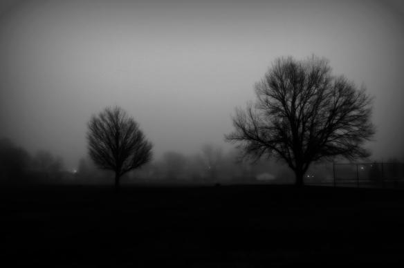two treesB