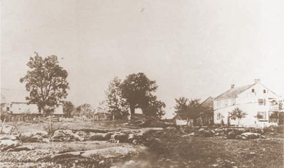 Dead horses at Gettysburg