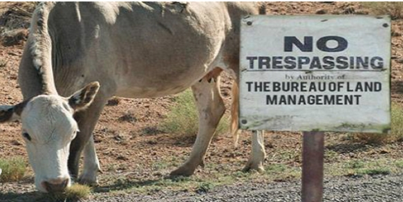 bundy no trespassing