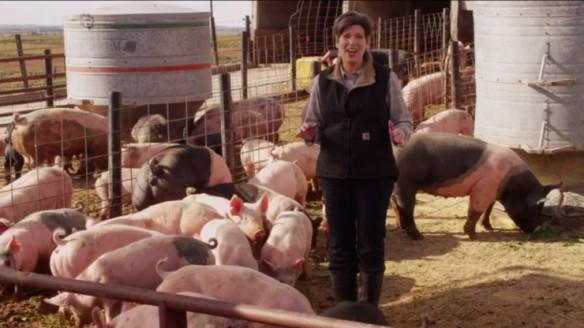 jodi-ernst-castrate-pigs-coddl