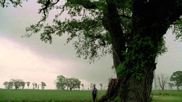 true detective tree2