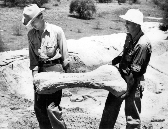 WPA - collecting fossils in Texas.